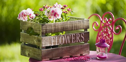 Holzkiste mit bunten Blumen